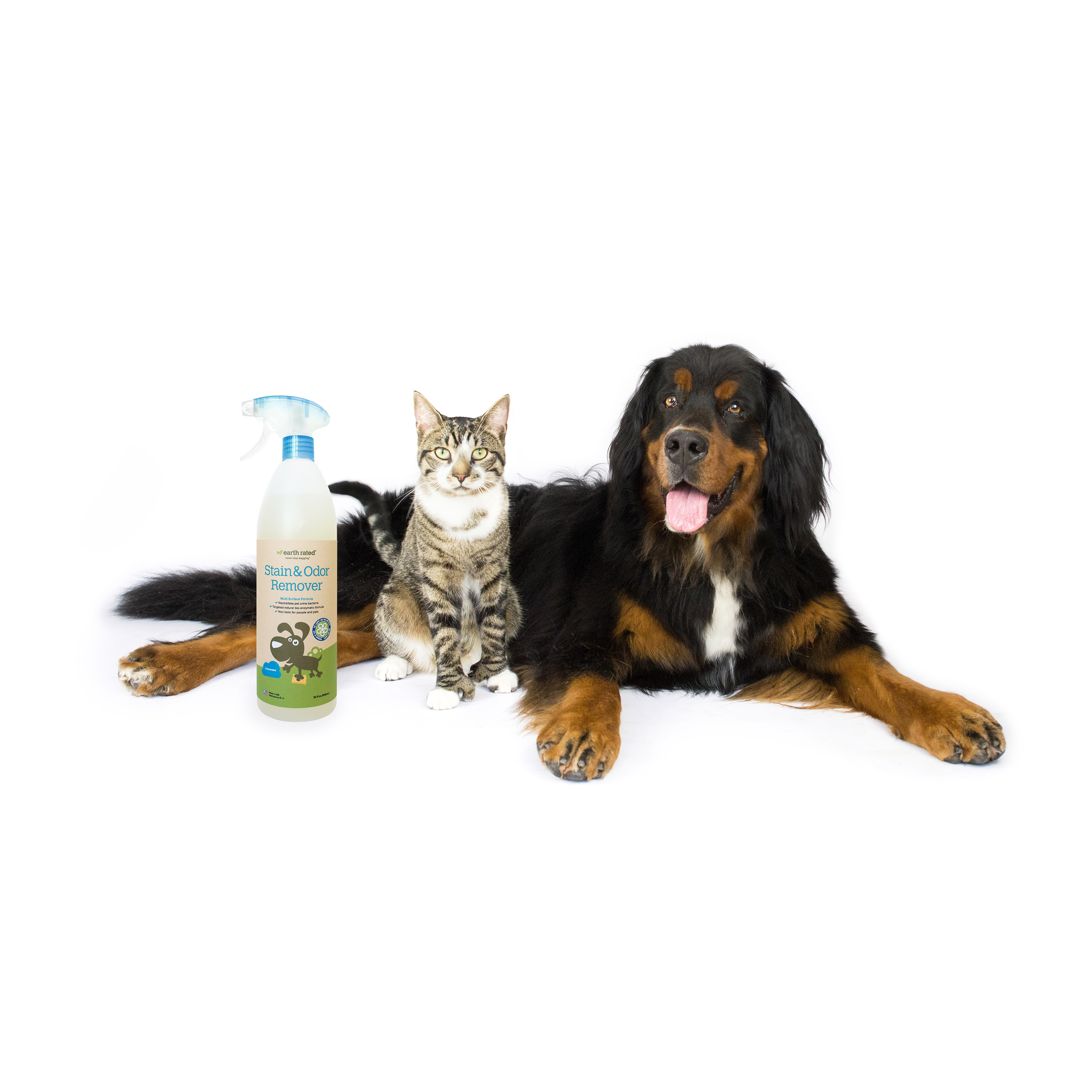 Pet Stain and Oder remover