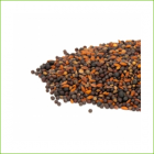 Spicy Microgreen Mix 1kg