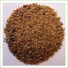 Lentil Crunch-Zesty (organic Mix) 1kg