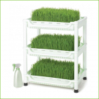 Wheatgrass Grower (SM-350)