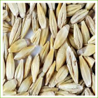 Hulls on Barley (grass) organic -1kg